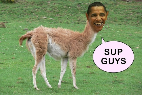 Obama Llama Fat Man Wiki Fandom Powered By Wikia