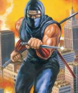 Ninja Gaiden - Ryu Hayabusa as he appears on the front art cover of the NES version of Ninja Gaiden