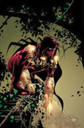 DC Comics - Azrael sitting on a branch