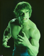 Marvel Comics - The Hulk as protrayed by Lou Ferrigno