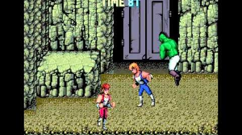 Double Dragon arcade 2 player Netplay game (no slowdown)