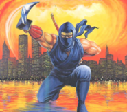 Ninja Gaiden - Ryu Hayabusa as he appears on the front art cover of the NES version of Ninja Gaiden III