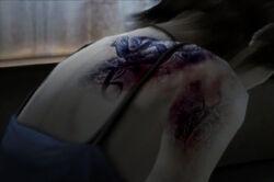 Rei Holly Tattoo curse
