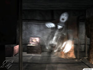 Koji as a ghost