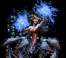 Widow Maiden