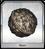 Yggdrasil seed