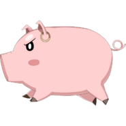 Circe pig