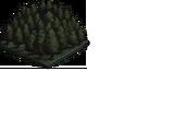 Free Quests: Salem