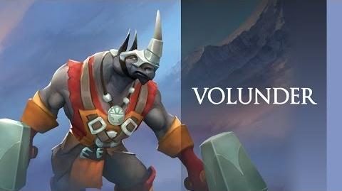 Volunder