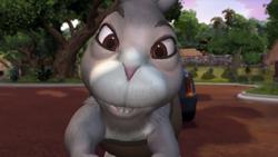 Sergeant Bunny