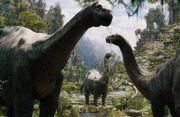 300px-Brontosaurus
