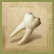 File:Ogre tooth.png