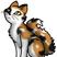 Mohnfrost's avatar