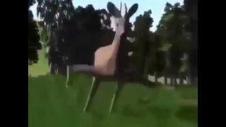 Dancing deer meme