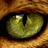 Mariya96's avatar
