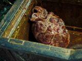 Das Herz von Davy Jones