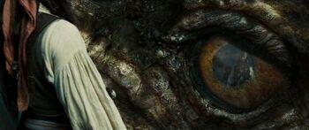 Kraken Auge