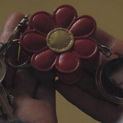 Jess's keys.