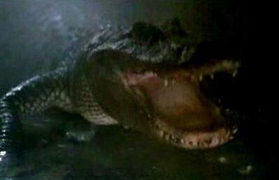 Mutant Alligator(Alligator 2 The Mutation 1991)
