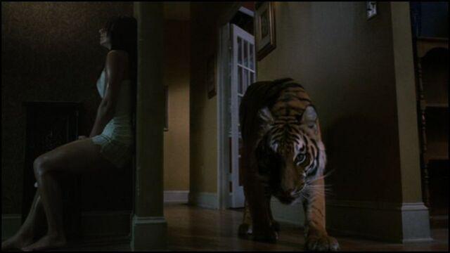 File:Lucifer(tiger)(Burning Bright 2010).jpg