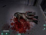 The slain commander