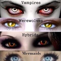 <i>The different eyes of various supernatural creatures</i>
