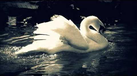 Tchaikovsky - Swan Lake (Finale)