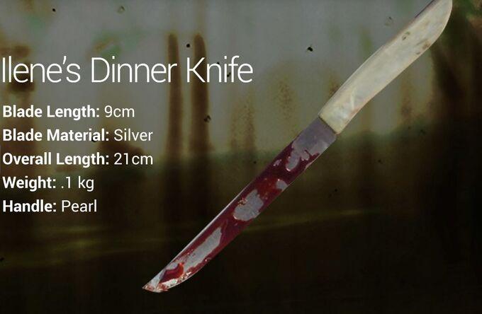 Ilene's Dinner Knife