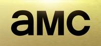 AMC logo2013