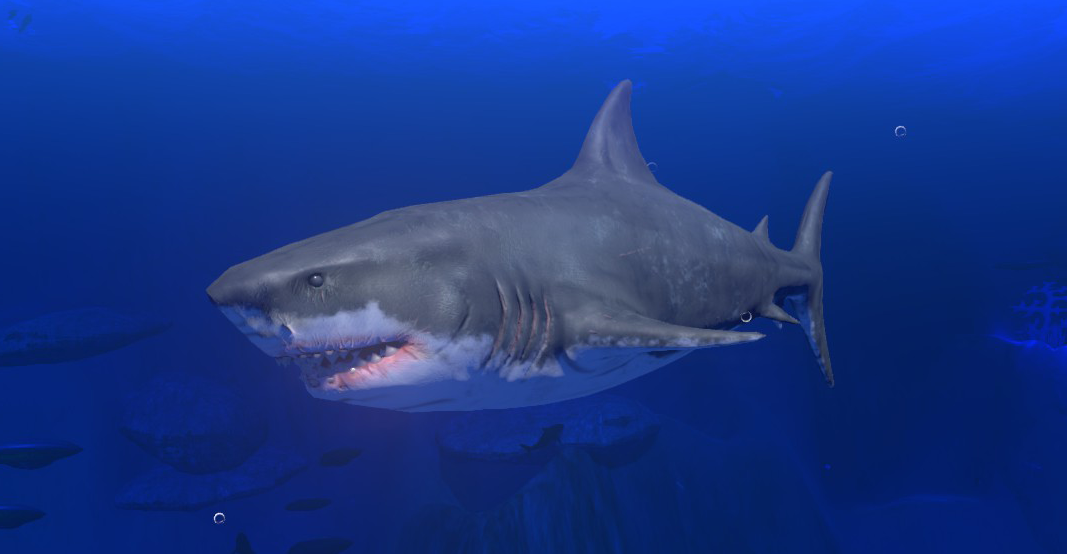 Great white shark feed and grow fish wikia fandom for Feed and grow fish