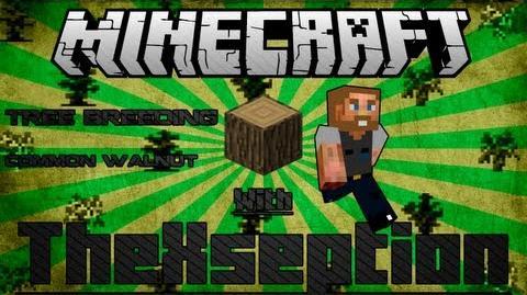 Minecraft FTB Tree Breeding Tutorial Common Walnut