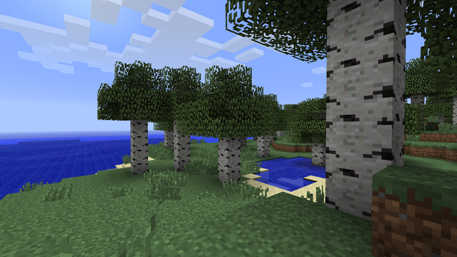 File:Birchtrees.png