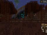 Biomes du mod Twilight Forest
