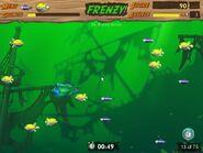 Pufferfish bonus