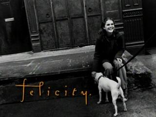 File:Felicity logo.jpg