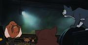 Catcongregation