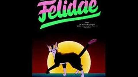 Felidae - Boy George