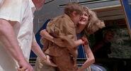 Jurassic-park-movie-screencaps.com-14079