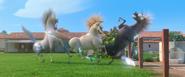 Horsedefeats (1)