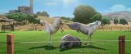 Horsespanking