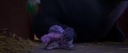 Hedgehogpiled (1)