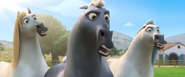 Horses shocked