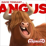 Angus promo