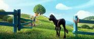 Nina and Ferdinand Entering Meadow