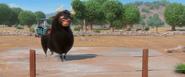 Ferdinand tap dancing