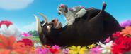 Runaway Bull!
