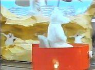 Polar Bear on Train