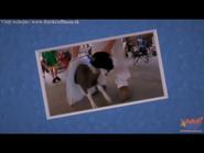 A Ballerina Goat