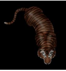 Tigertoken