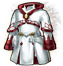 Icon-Cleric's Robes